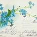 20 Grusskarten um 1900