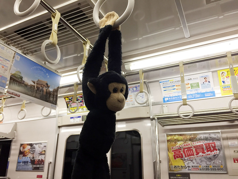 Monkey uses the hand holds on the train