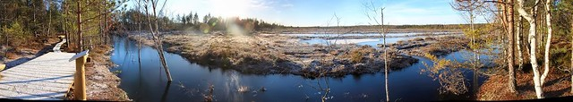 Endine Viru raba freesturbaväli / Former peat milling field of Viru bog in Estonia