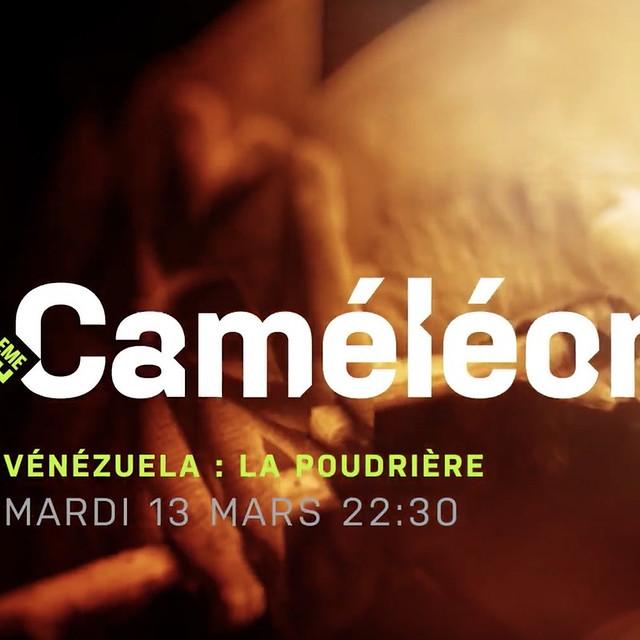 Caméléon, Venezuela : La poudrière