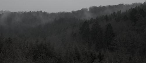 Vernal rain