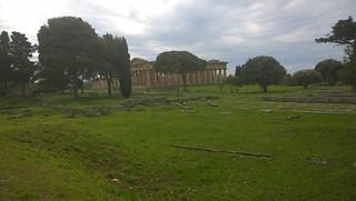 The temple in Paestum