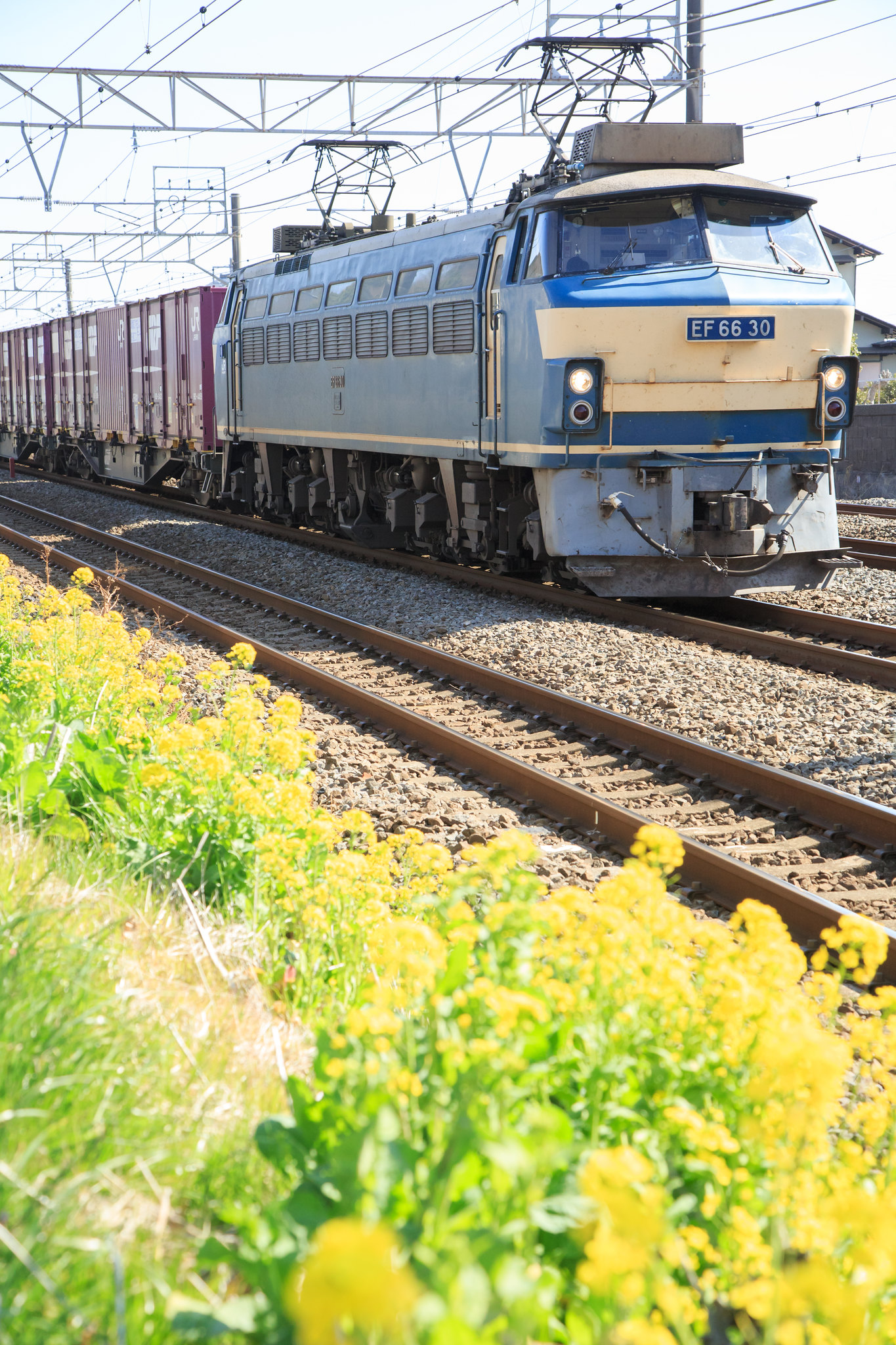 EF66 30 / Tokaido Line