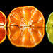 Small photo of Citrus Traffic Light