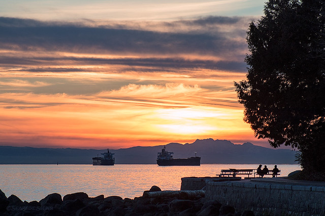 Stanley's Sunset 🌅🌳 Vancouver, BC