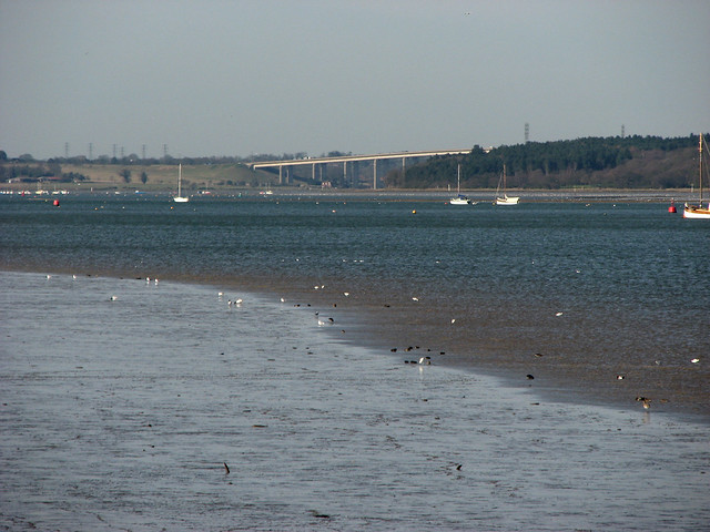 The River Orwell near Shotley