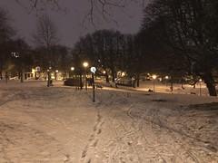 Fine couche de neige sur les chemins du parc