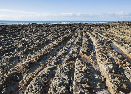 lisaridings fantommst kaka point beach bay southland nz newzealand lowtide rows rockyshelf kakapoint