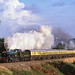 4965 At  Danzey. 03/10/1999