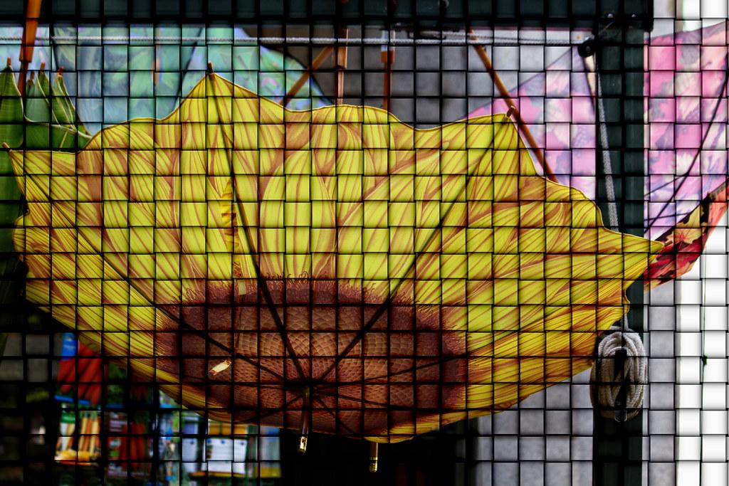 Un paraguas girasol