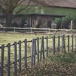 2015-02-10 um 13-43-15 - Zaun - Landwirtschaft - Scheune