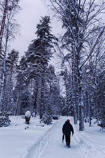 Kuhmo old cemetery, in Christmas Eve