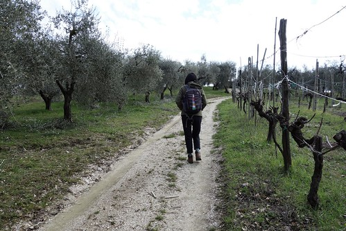 Walking from Amelia to Fornole, Italy