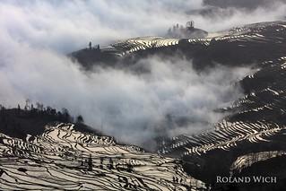 Yuanyang - Rice Terraces