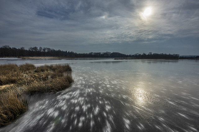 Dutch ice beauty