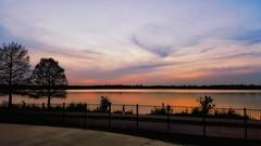 Sunset at Dallas  Arboretum Garden