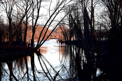 oxbowconservency southeastindiana lawrenceburgindiana sunrise canal jackpotlake nikond750