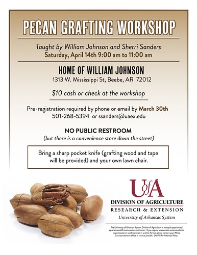 Pecan Grafting flyer