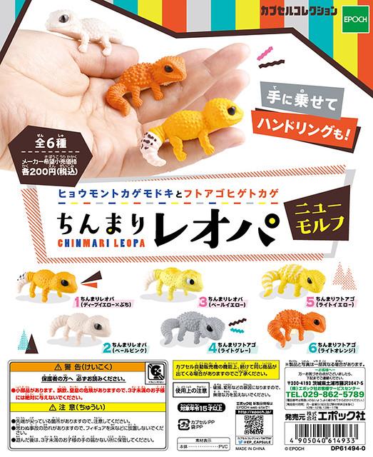 EPOCH 「指上爬蟲類」好評續推 新配色版本!ちんまりレオパ ニューモルフ