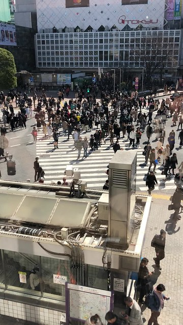 Shibuya scramble at lunch time