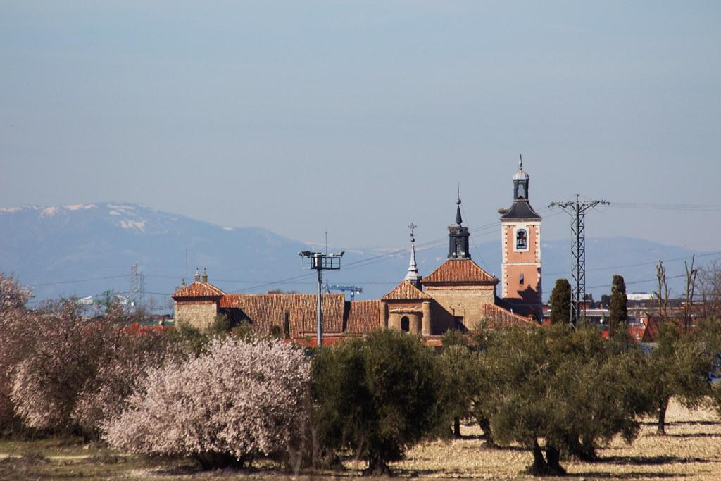 Almendros, olivos, la parroquial y la sierra