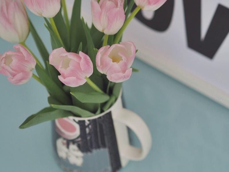 tulips springvibes