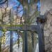 Arniston Beech Avenue Gates (110)