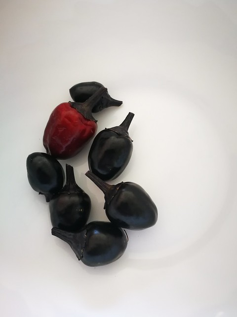 7 individual black olive chillies