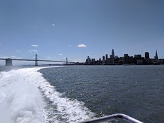 San Francisco in our wake