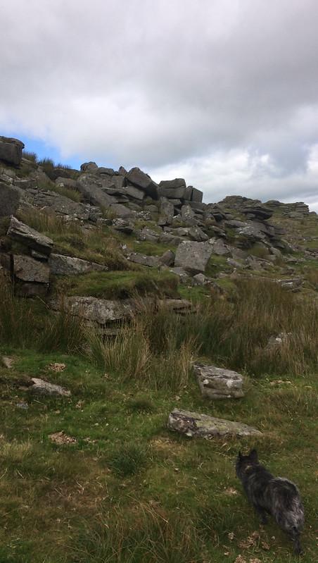 West Mill Tor Rocks