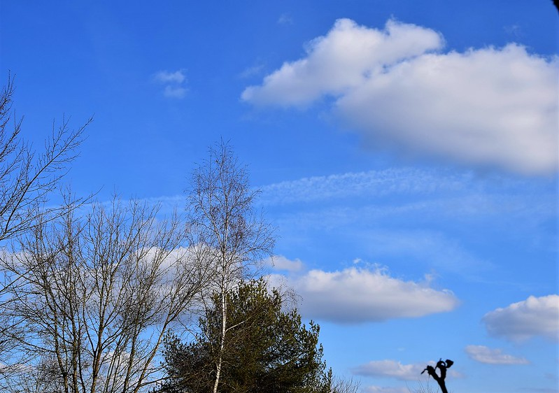 Clouds 23.03 (1)