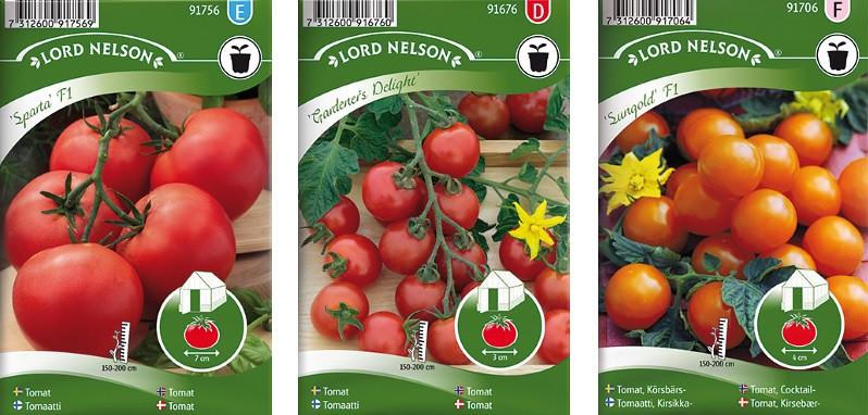 tomaatit 2018