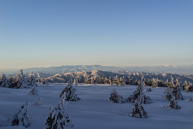 風景, Sony DSC-RX1R, 35mm F2.0