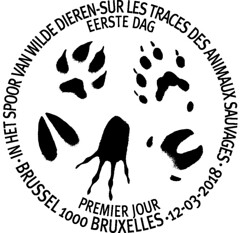 04 TRACES D'ANIMAUX