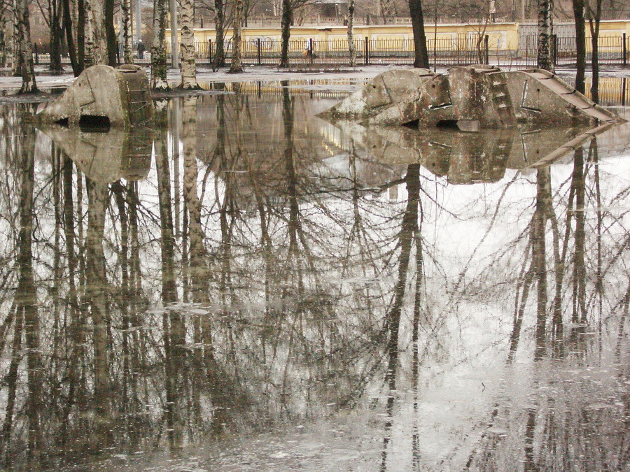 07.03.11 Слоны в Вас-саду