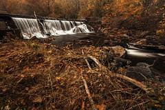 Frank Bentz Memorial Lake Falls [11.09.17]