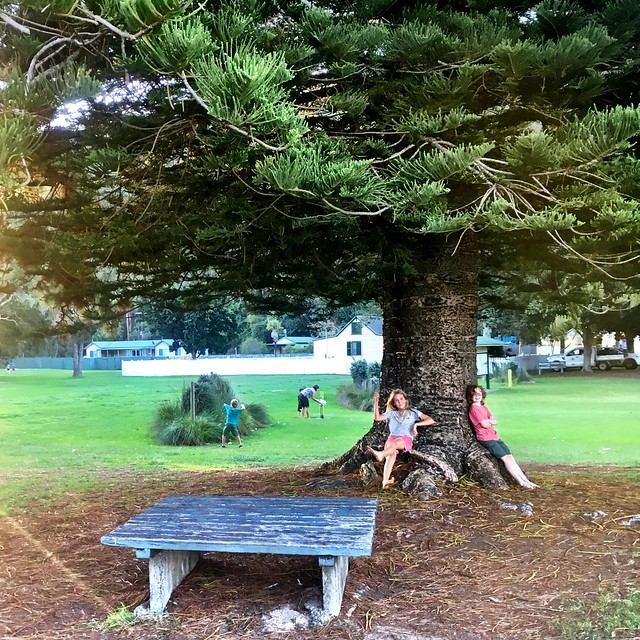 Zoe and Elijah under the tree. The Basin. Pittwater.