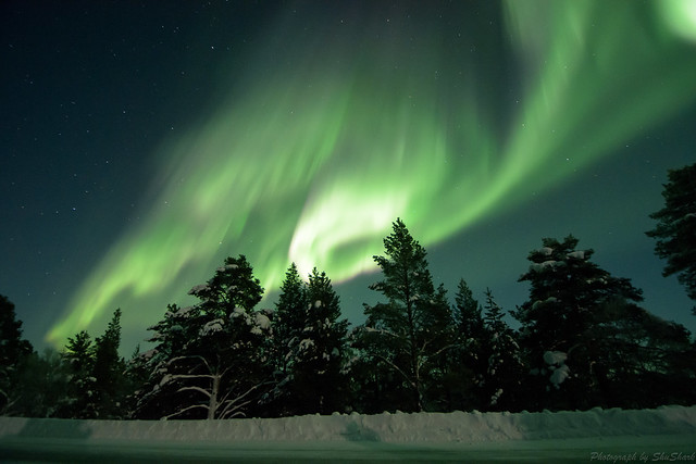 20180222-Finland-DSC_6484