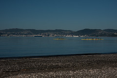 Rowing with the Wellington harbor on the back