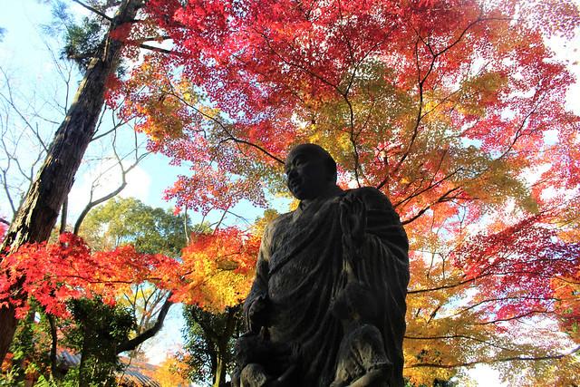 imakumanokannonji-koyo014