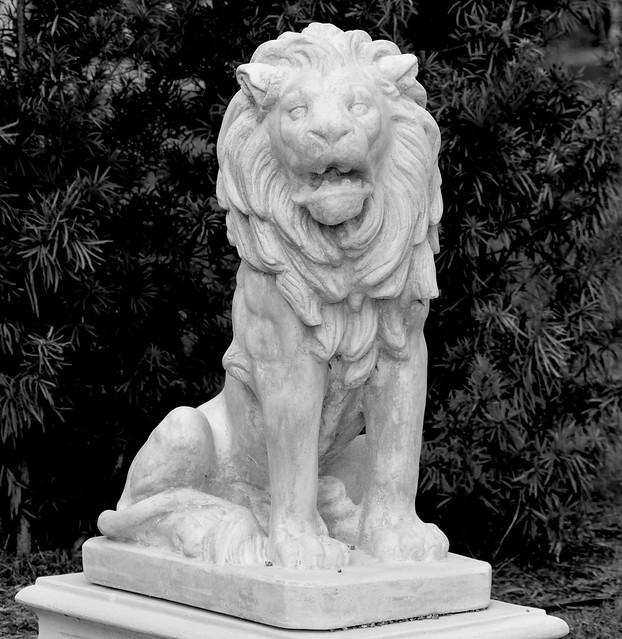 Lion Venezia Park