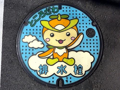Tokorozawa Saitama, manhole cover 2 (埼玉県所沢市のマンホール2)