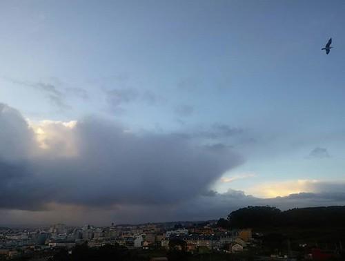 Amanece el día en Coruña (con gaviota incluida). #Coruña #seagull #nubes #clouds #phonephoto #sinfiltros #nofilter