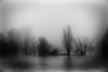 Les brumes éthérées de fantômes délavés by Alexandre DAGAN