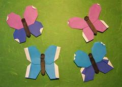 Modular Butterfly