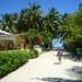 6. Excursión desde el Pearl Beach View de Maldivas