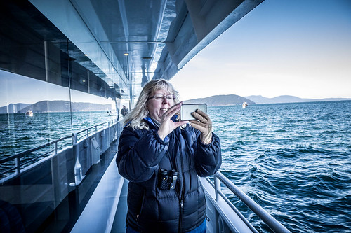 Whale Watching with Island Adventures-136