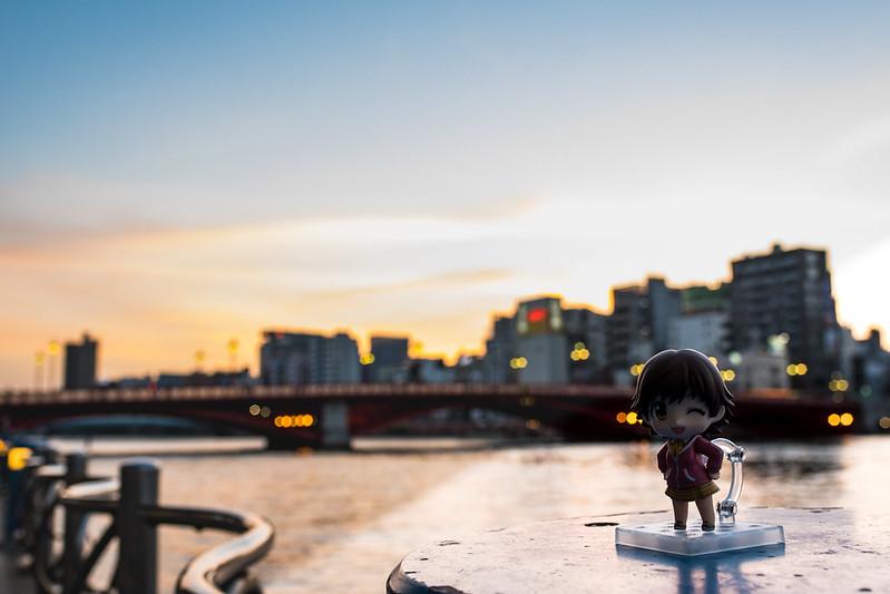 浅草の夕焼けとねんどろいどの写真