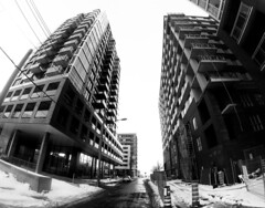 Griffintown Twins - Murray Street