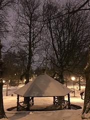 L'abris rustique la nuit sous la neige